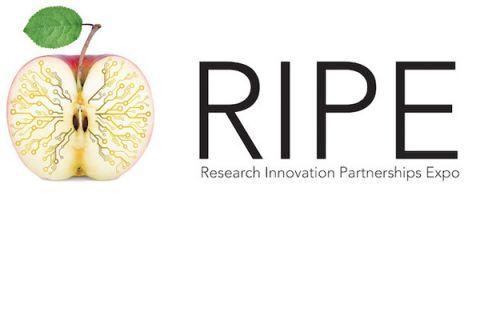 Research Innovation Partnership Expo logo
